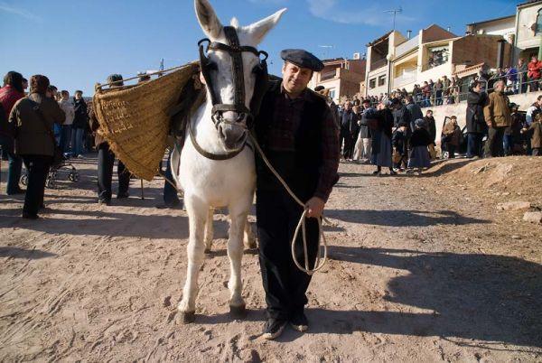 El Traginer y la mula