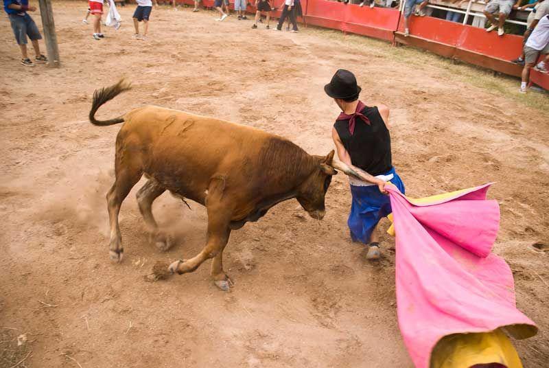 Torero con capa y toro