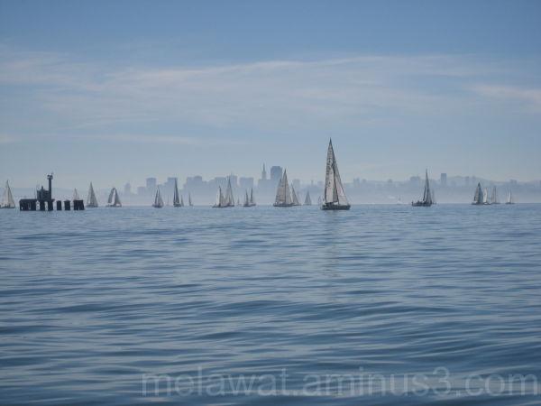 Sailboats of Monterey Bay