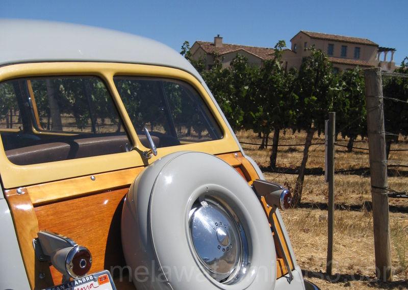 Wine & Wood