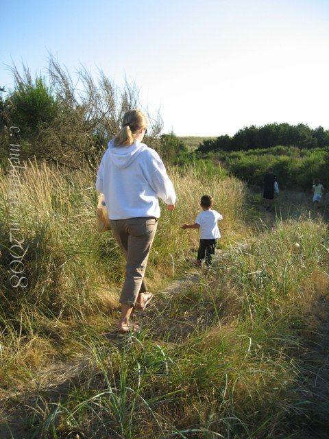 Walking the Beach Path