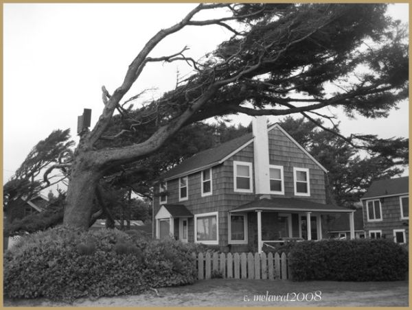 Cannon Beach Home in Black and White