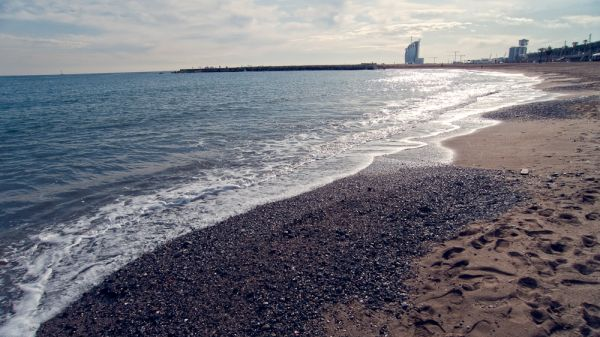 Barceloneta's beach