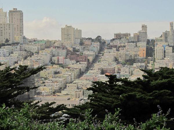 The San Francisco Hills