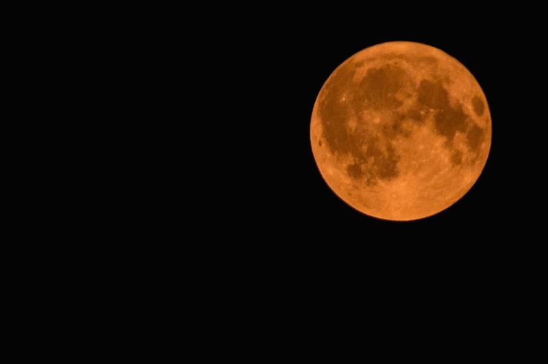 Wildfire Moon