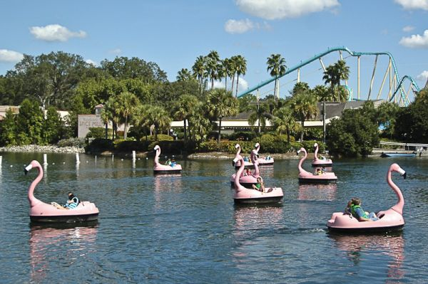 Flamingo Lake?