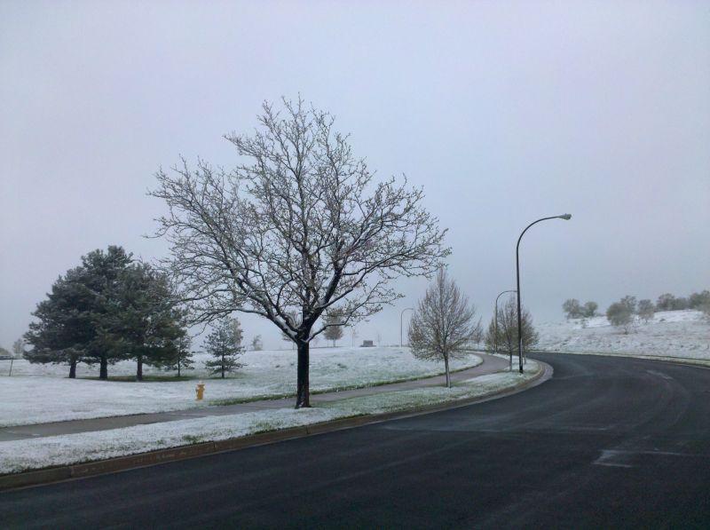 Colorado Snow 2