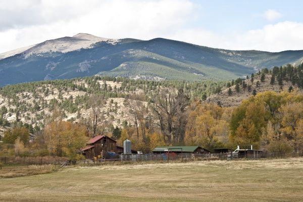 Colorado Mountain Farm