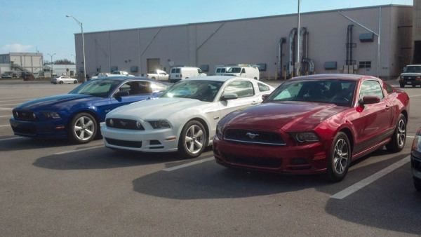 Red, White and Blue Mustangs