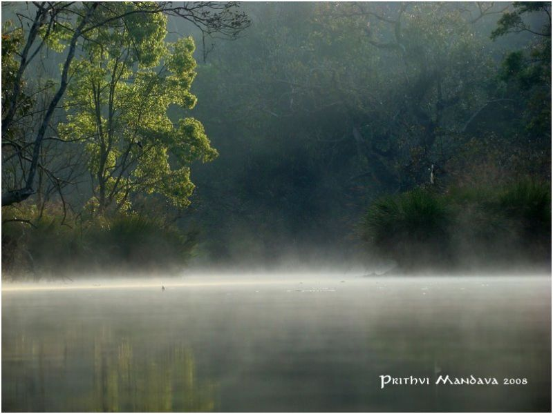 Early morning fog over river in Coorg, India