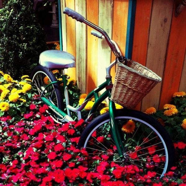And a bike...