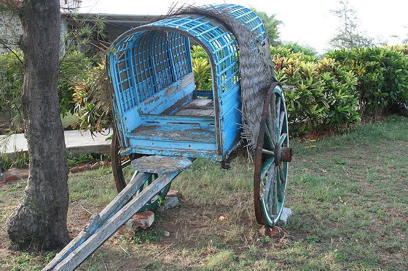 Urban Decay - Mahaballipuram
