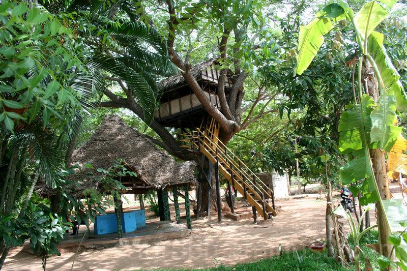 Tree-House, Pondicherry, Chunnambar