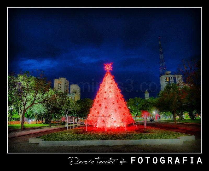 Merry Christmas to Everybody