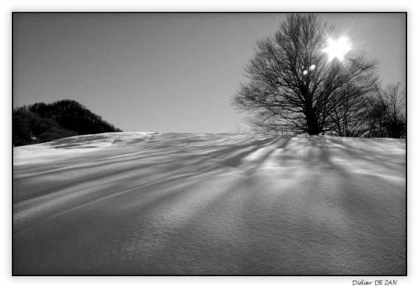 Un peu de neige au soleil