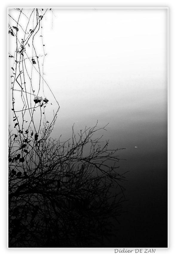 Au bord de l'eau ...