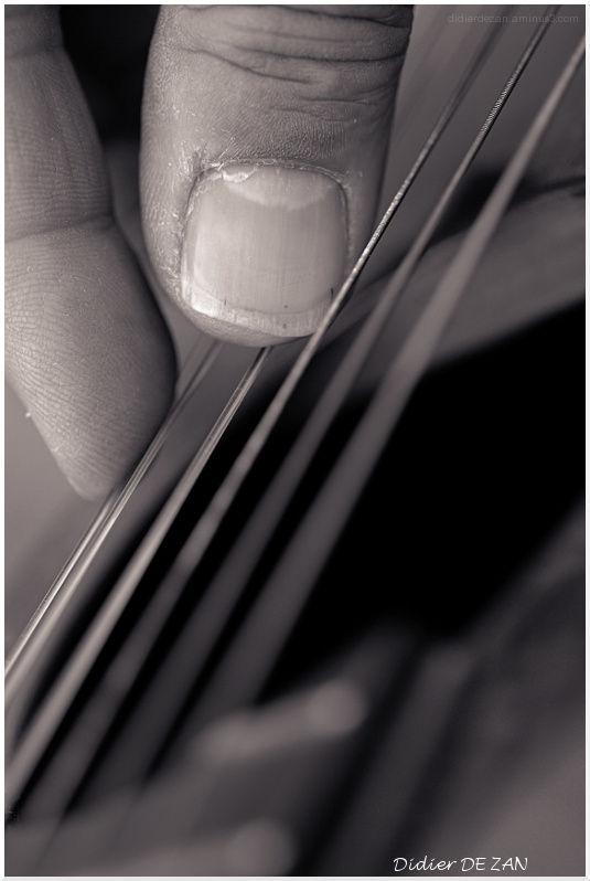 Guitar player ....