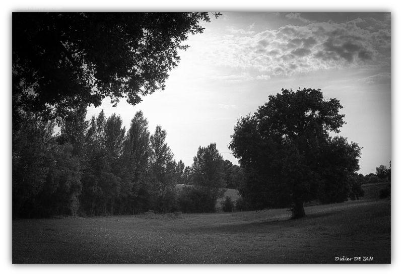 Fin de journée à la campagne ....