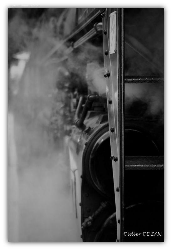 Steam....