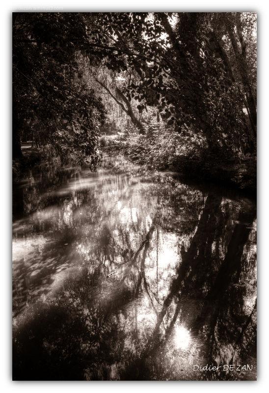 Shadows falls .....
