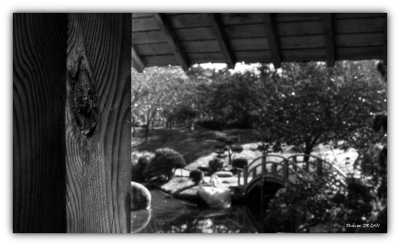 Le jardin ....