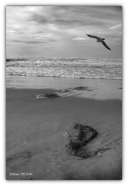 Sur la plage ....