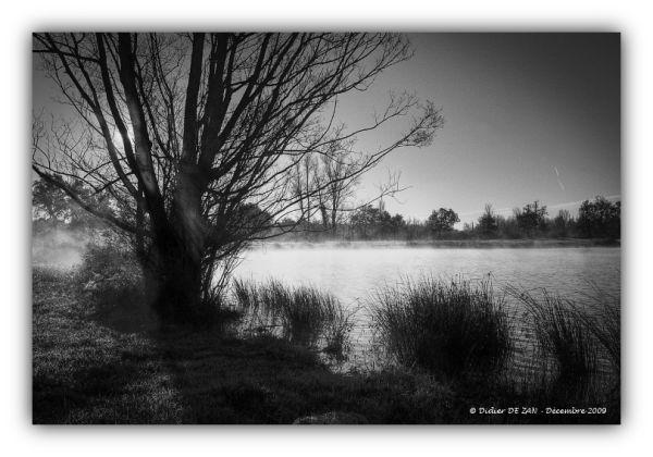 Au bord de l'eau ....