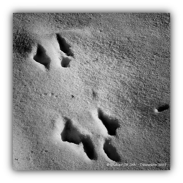 Traces .....