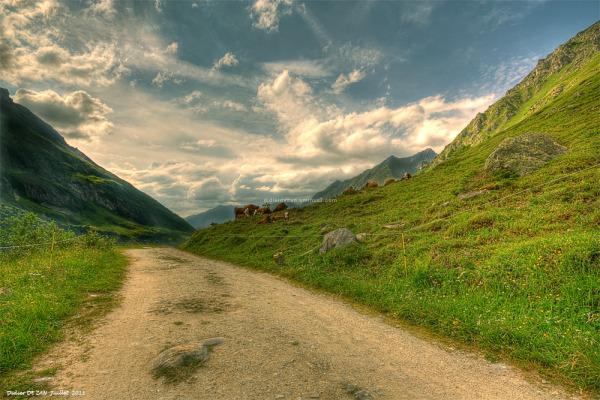 Paysage des Alpes ....
