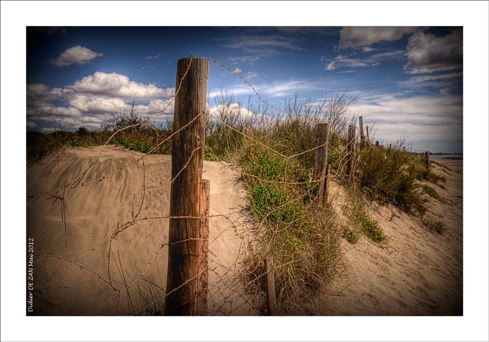 Dune....