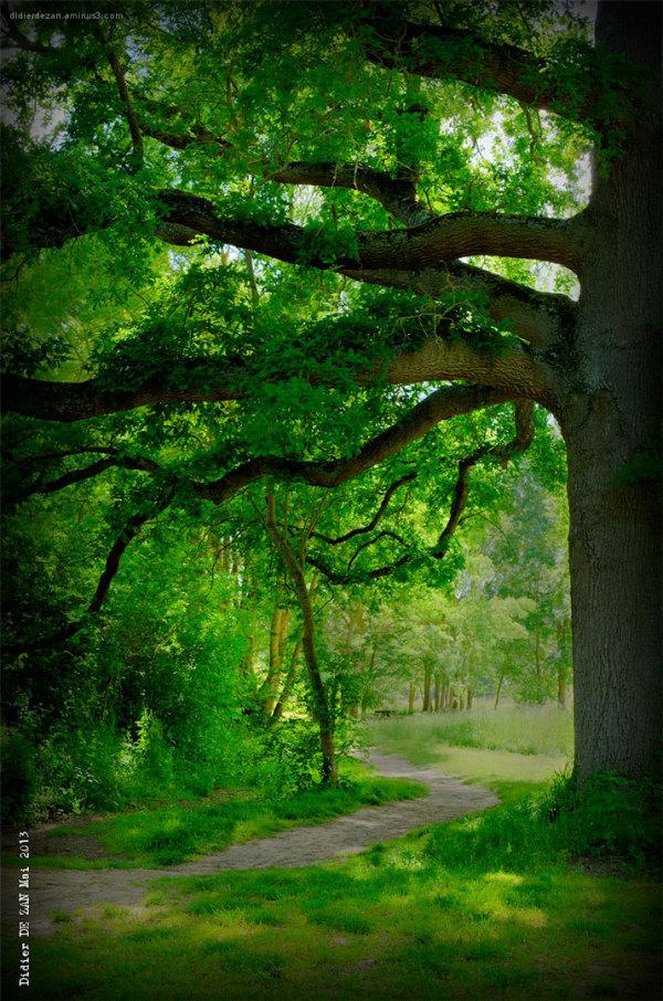Green mood ....