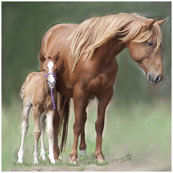 Mare and Filly