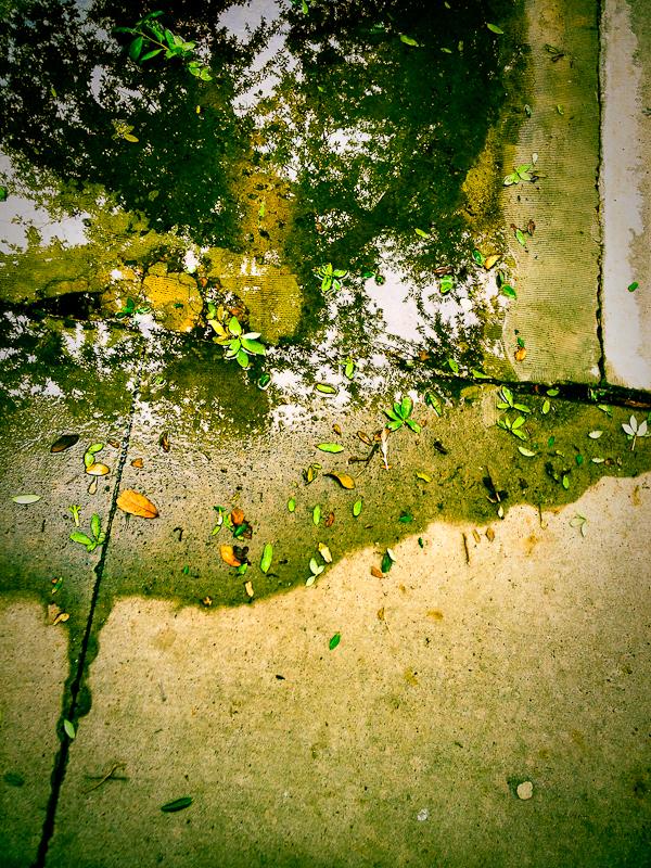 Concrete #9