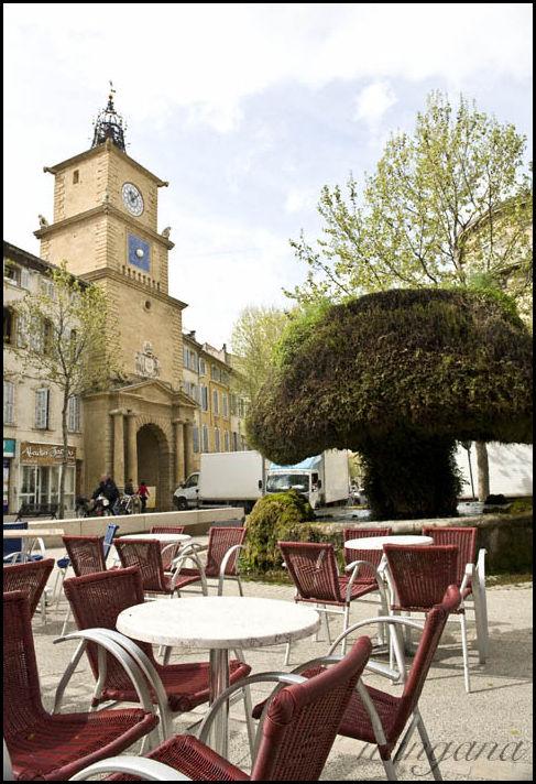 salon de provence fontaine moussue cafe tower