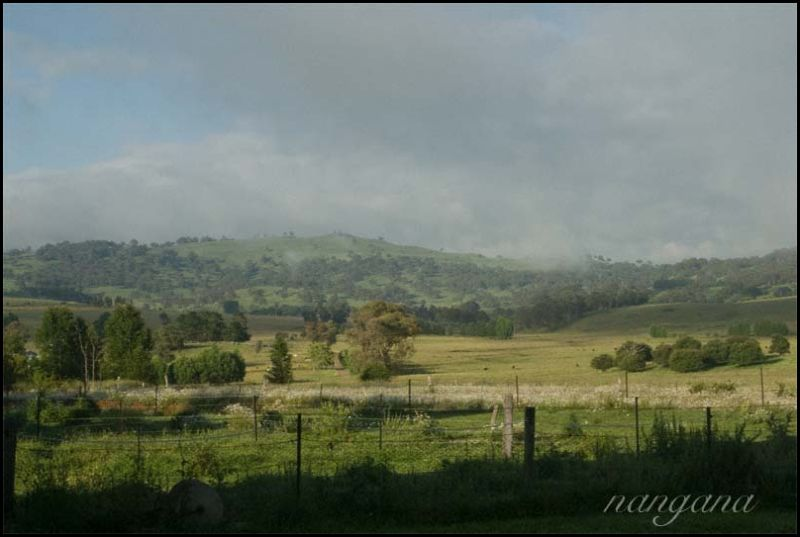 landscape fog new south wales NSW