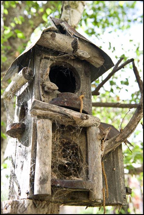 wooden nest
