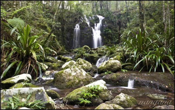 joolbahla falls Lamington National Park