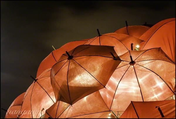 umbrellas vivid sydney