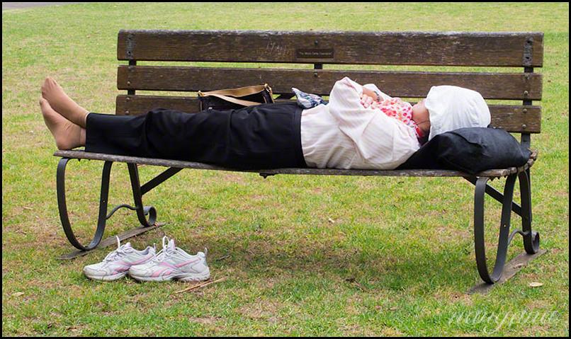 siesta in the park