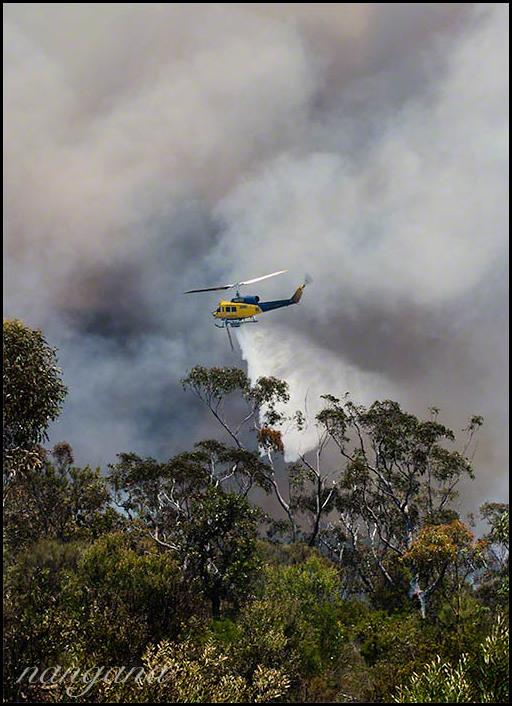 kedumba bushfire - waterbombing