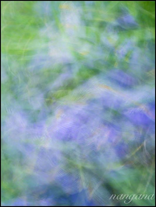purple blur
