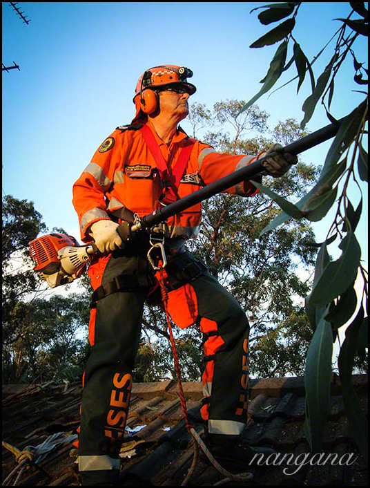 SES volunteer on a storm damage job