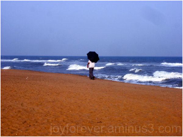 beach umbrella walker
