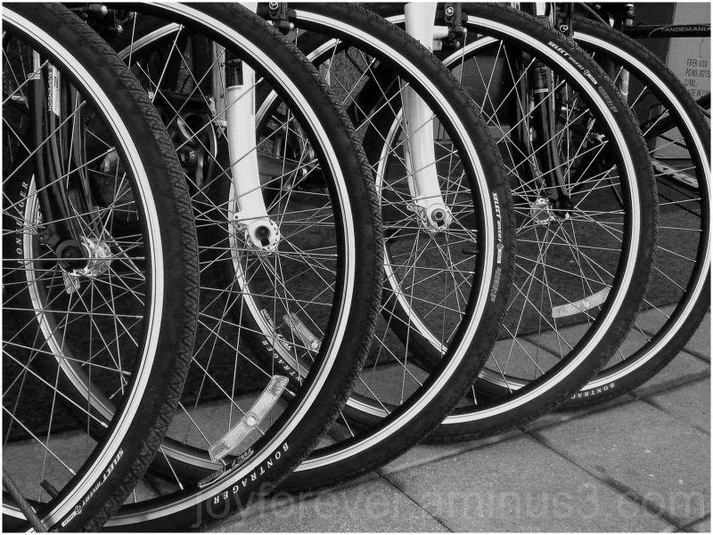 bike bicycle wheels black & white