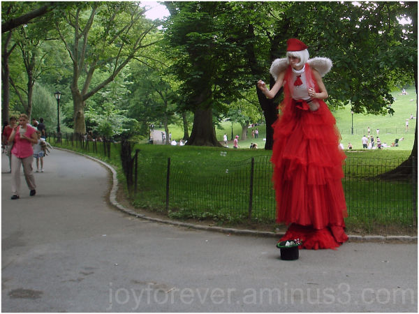 central park new york city fairy red