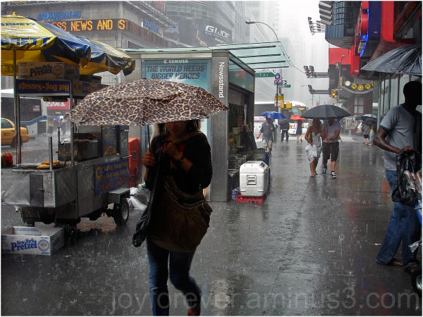 rain new york umbrella times square street