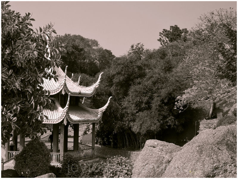 japanese garden sepia black-and-white ramoji