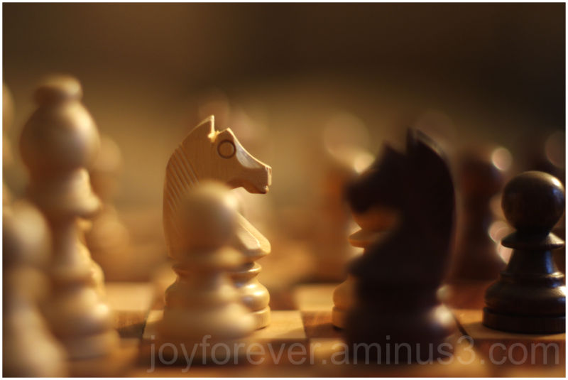 chess chessmen knight black white focus dof