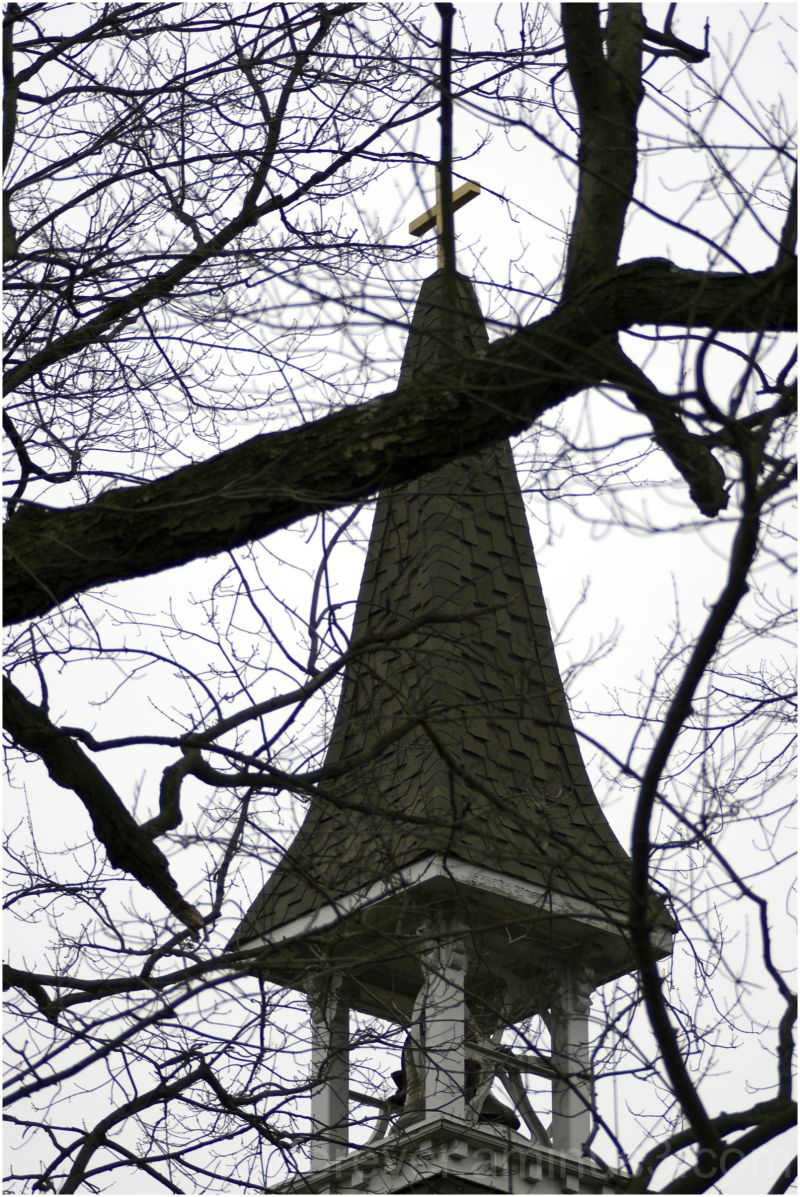 church bell tower bell-tower tree branches winter