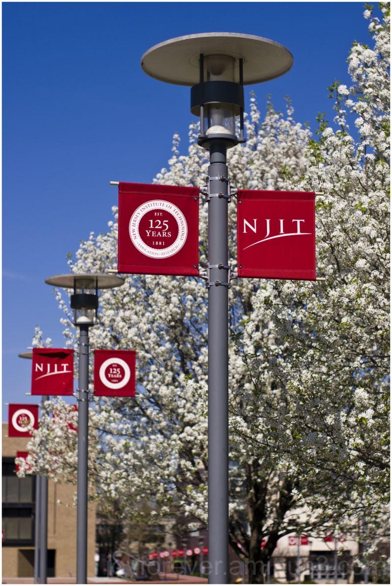 njit newark apple blossom spring trees red white